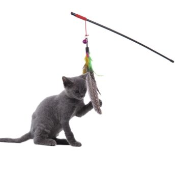 cat toy fishing pole