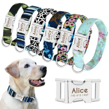 personalised dog collar nylon