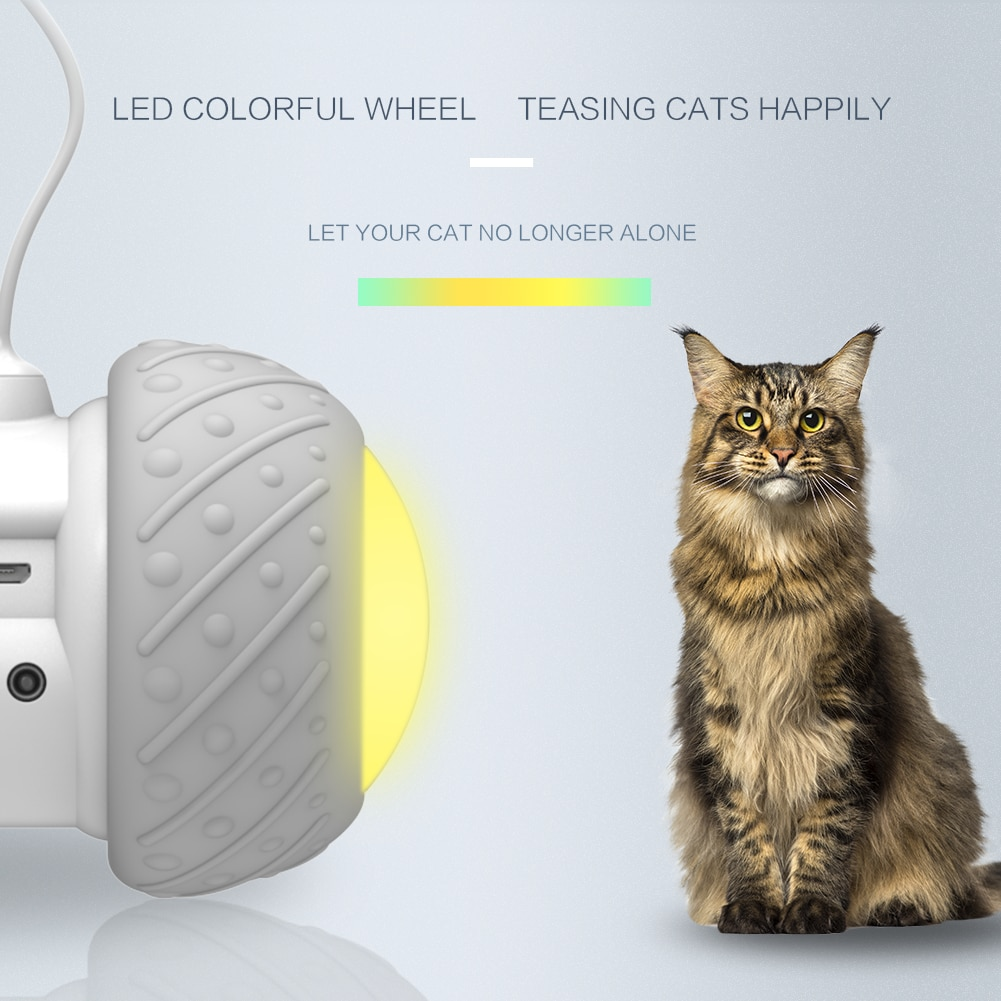 Best interactive cat toys for indoor cats